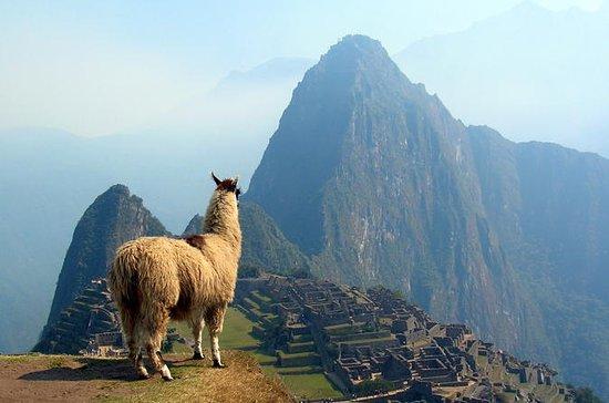 12 días en América del Sur: Machu...