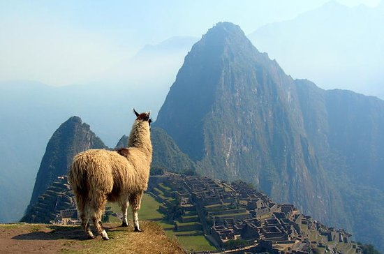 12-dages Sydamerika: Machu Pichu...