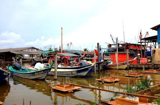 Paddy Field & Fishing Village