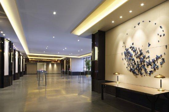 Dayi County, Cina: Foyer