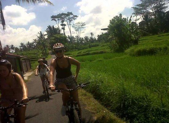 Ubud Bali Activities