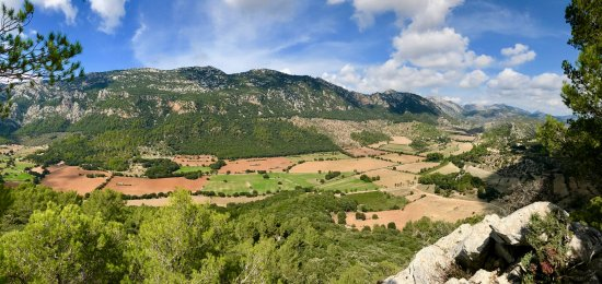 Orient, Spain: A view of the valley, with Son Palou on the right