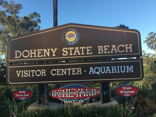 Dana Point, CA: Doheny State Beach