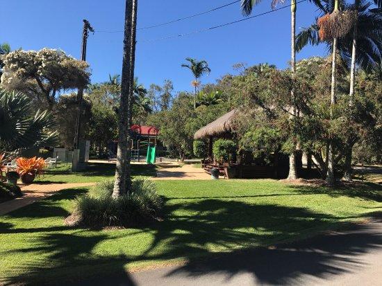 Atherton, Austrália: photo1.jpg