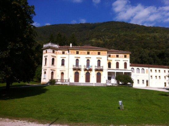 """Villa Piva, detta """"dei Cedri"""""""