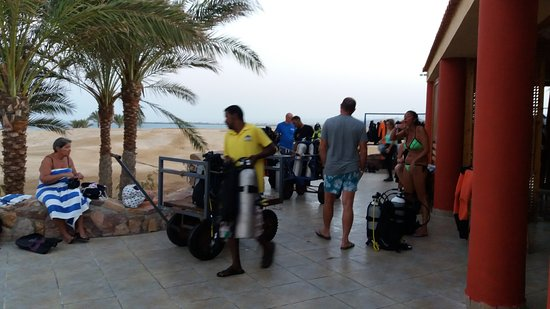 ORCA Dive Club Wadi Lahmy: orca diving betty e miky ottobre 2017!!top!!