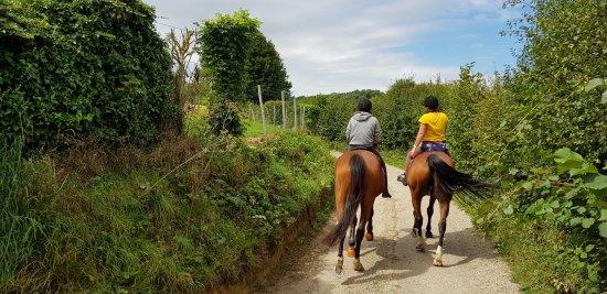 Forges-les-Eaux, Fransa: Activité balade à cheval