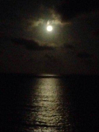 Clubb Coolum Beach: photo0.jpg