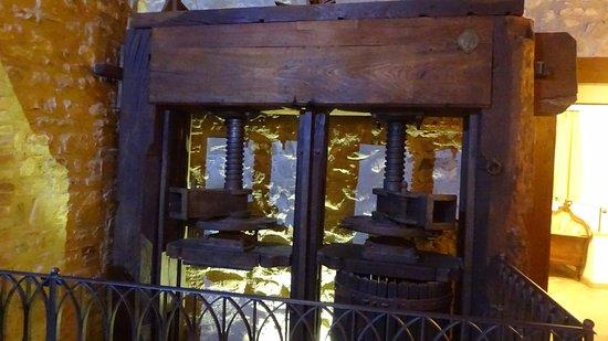 Canalicchio, Italia: All'interno della struttura
