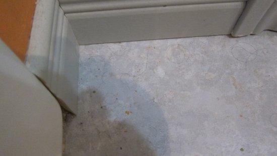 Saint Aime Des Lacs, Canada: derrière la porte de la salle de bain....