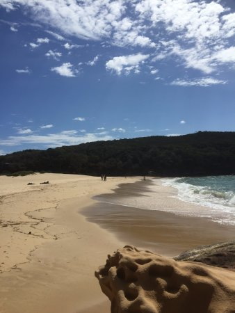 Royal National Park, ออสเตรเลีย: Wattamolla beach