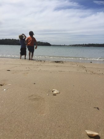 Royal National Park, ออสเตรเลีย: Beach just front of our camp site