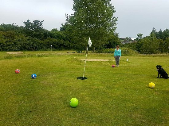 swanage golf games