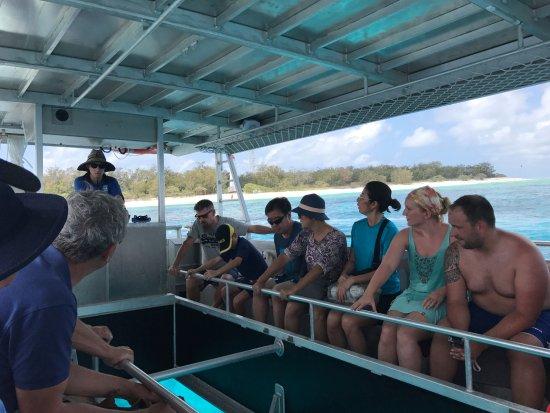 Lady Elliot Island, Australia: Glass bottom boat trip