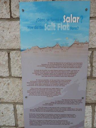 Atacama Region, Cile: Salar Infos (salzsee)