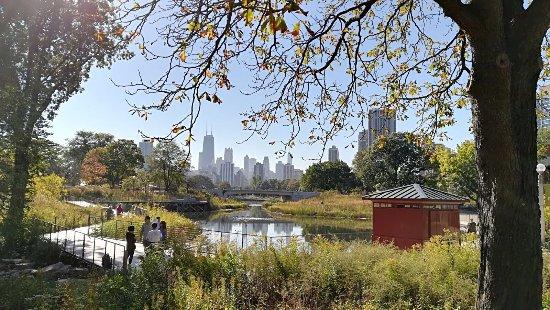 林肯公園照片