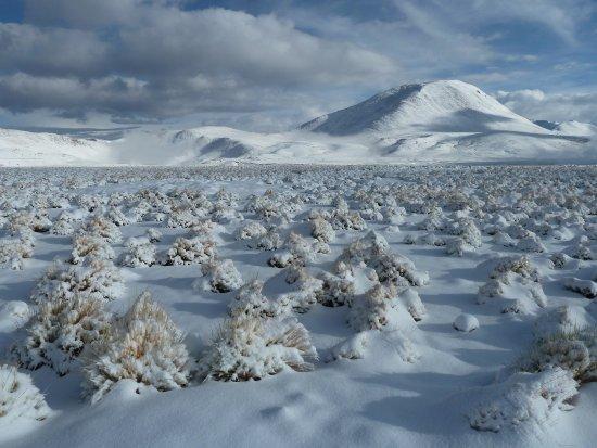 Región de Atacama, Chile: Winterlandschaft, ca. 80 km nördlich von San Pedro