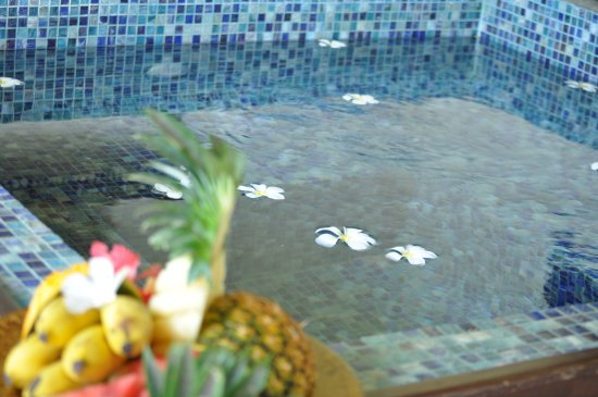 The Palms: private plunge pool