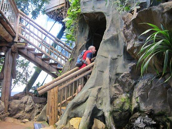 Haus des Meeres Aqua Terra Zoo Picture of Haus des