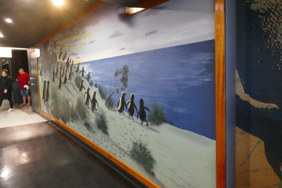 Phillip Island Nature Parks - Penguin Parade: photo1.jpg