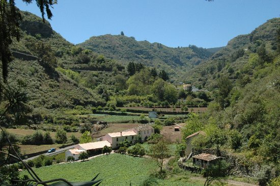 Valleseco, Espanja: Como parte del Parque Rural de Doramas, el Barranco de la Virgen alberga relictos de laurisilva.