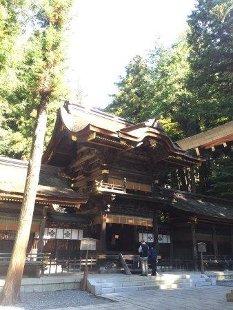 Suwa Taisha Shimosha Harumiya: photo5.jpg