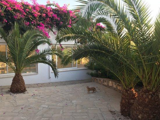 Bella Napa Bay Hotel Photo