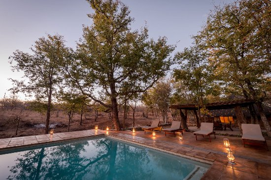 Balule Nature Reserve, South Africa: The camp pool