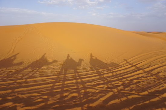 Ouarzazate Unlimited Marrakech Day Tours : Merzouga / Erg Chebbi with our camels
