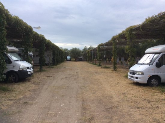 Camping Meltemi: photo0.jpg