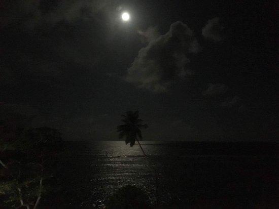Anse Forbans, Seychellen: photo5.jpg