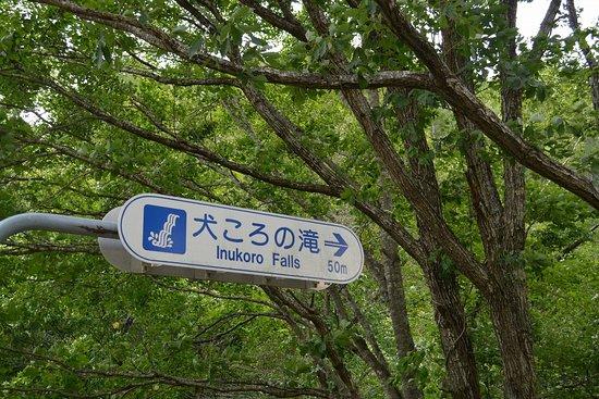 南相木村照片