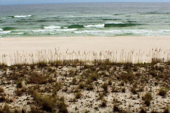 Pensacola Beach: Ocean, sand and Sea Oats.