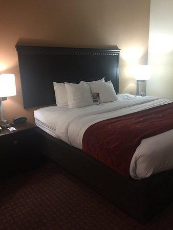 Comfort Suites Shreveport: photo1.jpg