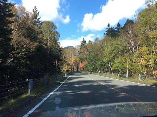 Tochigi Prefecture, Japón: 金精峠
