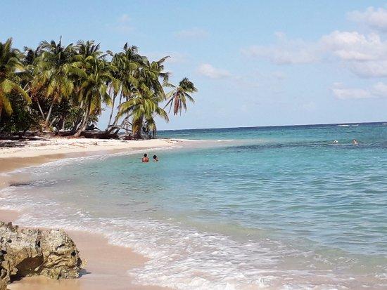La Rose du Brésil : Plage de Petite Anse le 8 octobre 2017