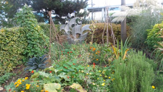 Salford, UK: blue peter garden