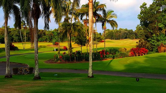 Paradise Links Resort Port Douglas: The nearby gold course