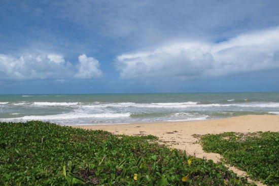 Praia dos Nativos