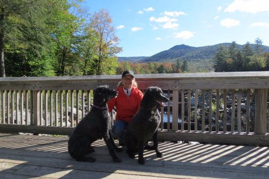 West Rutland, Βερμόντ: Me, Dizzy Gee and Jazz at Leffert Pond