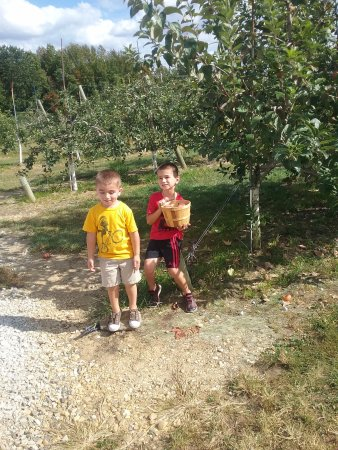 Mullica Hill, NJ: Alex and Daniel with apples
