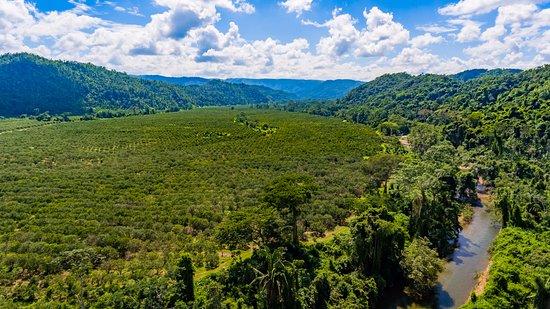 Belmopan, Belize: Roaring River