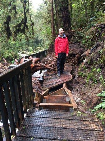 Milford, New Zealand: Boardwalk in slight state of disrepair!