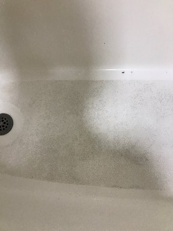 Anna, IL: Tub beyond dirty. Possibly blood in it. Couch looks like it's from the side of the road-cigarett