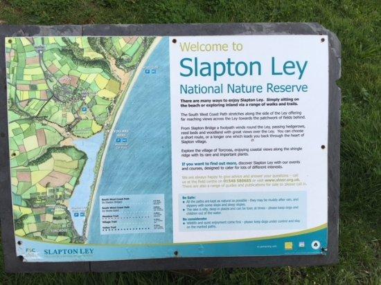 Slapton Picture