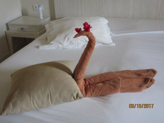 Les femmes de chambres sont des amours photo de seabel for Chambre public affairs