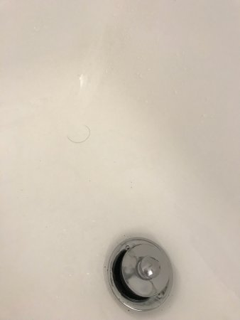 College Park, MD: Dirty, hair in the tub, rusty!