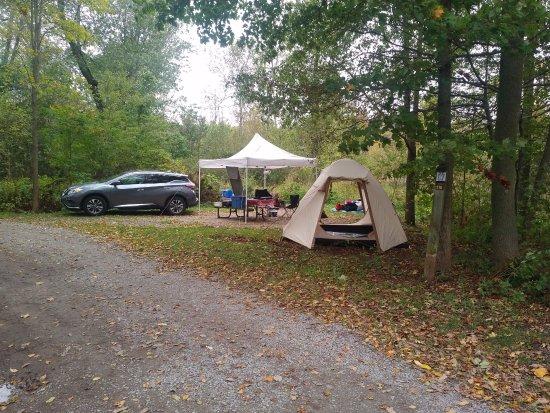 Brighton, Canada: Our camp at site 116 Pines Camp Area at Presqu'ile
