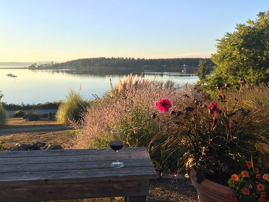 Lopez Island, WA: Evening view from the deck.