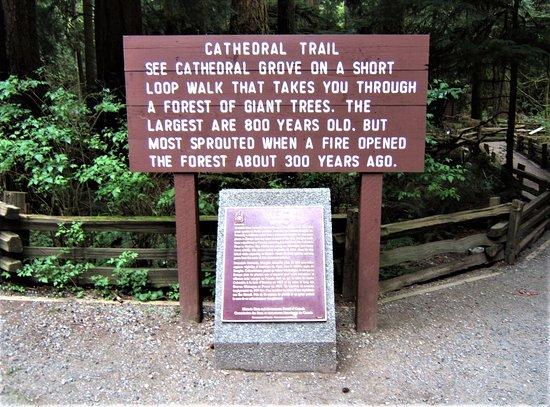 Port Alberni, Canada: Cathedral Trail